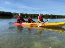 guided kayak tours in Englewood